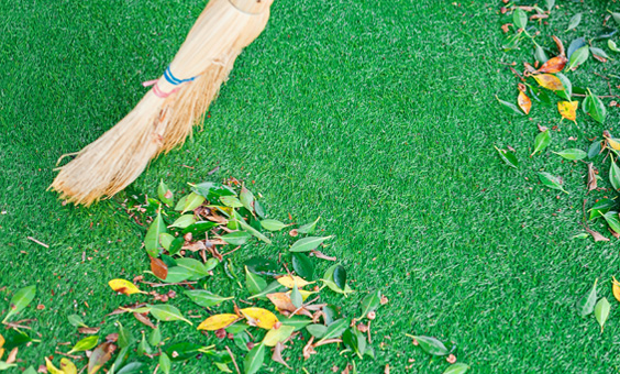Artificial Grass Care Guide